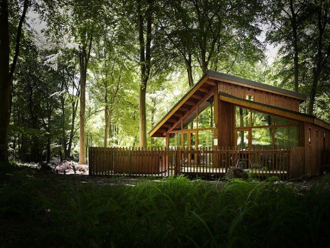 Outdoor Forest Holidays
