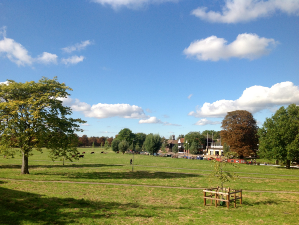 Midsummer Common Cambridge