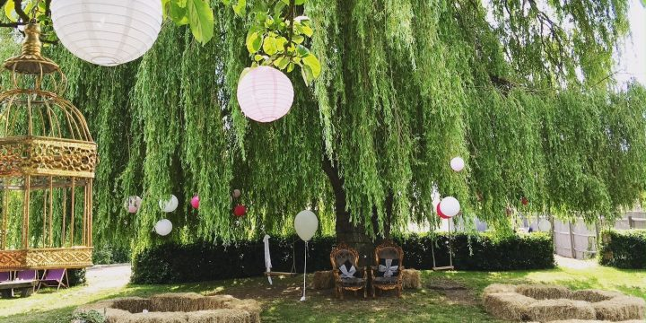 The Willow Tree at Bourn
