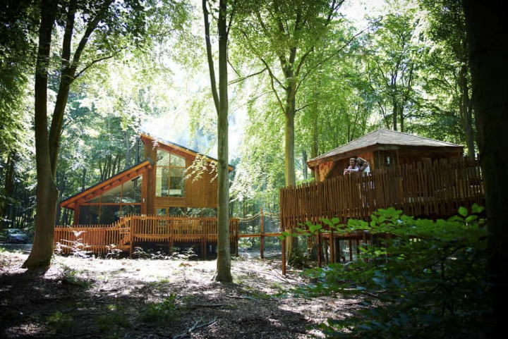 Woodland retreats